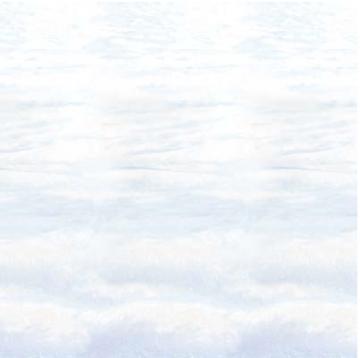 Snowscape Backdrop